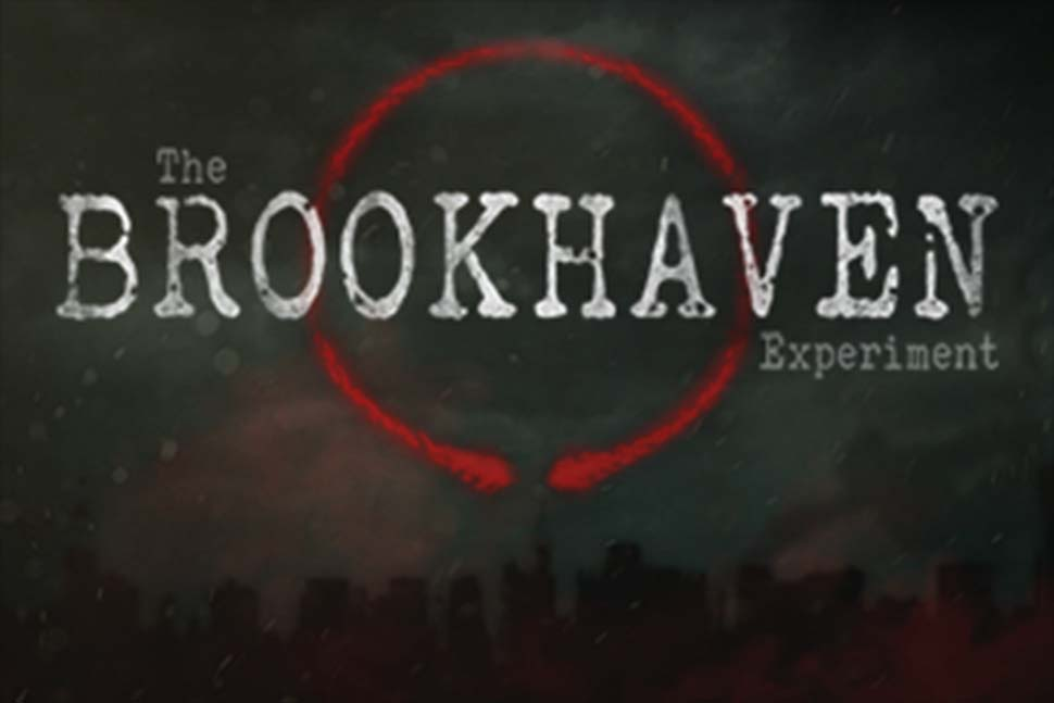 The Brookhaven Experiment Image
